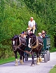 >Horse-drawn Cart, Carsington Water by Rod Johnson