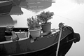 >Frosty On Board Garden, Shobnall Marina by Rod Johnson