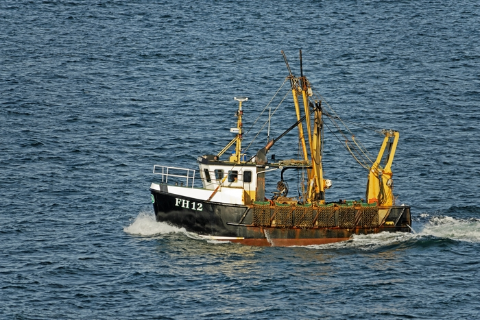 Fishing Boat FH12 off Pendennis Point by Rod Johnson