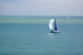>Yachts Sailing in Ventnor Bay by Rod Johnson