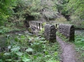>Foot-bridge at Millers Dale by Rod Johnson