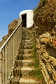 >Steps To Dead Mans Hut, Portreath by Rod Johnson