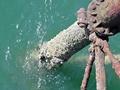 >Llandudno Pier Structure by Rod Johnson