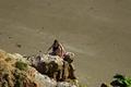 >Girl On The Rocks, Compton Bay by Rod Johnson