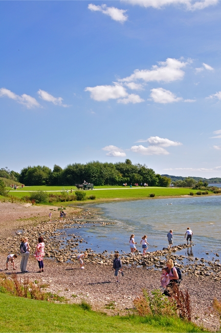 Beach Fun at Carsington Water by Rod Johnson
