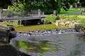 >River Wye Through  Buxton Pavilion Gardens by Rod Johnson
