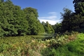 >Mere Pond in Calke Park by Rod Johnson