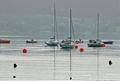 >Boats On Carsington Water by Rod Johnson