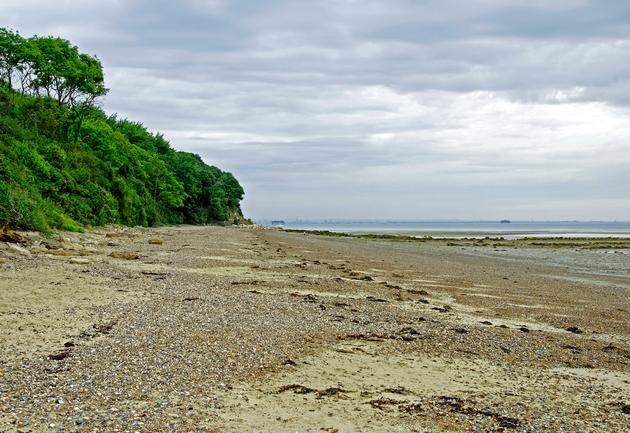 >St Helens Beach, near Priory Bay by Rod Johnson