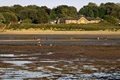 >Bait Digging At Bembridge by Rod Johnson