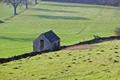 >Hillside Barn by Rod Johnson