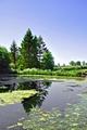 >Village Pond, Tissington by Rod Johnson
