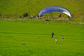 >Paraglider Landing Near Ilam by Rod Johnson