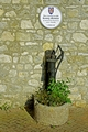 >Rectory Mansion and Hand Pump, Brading by Rod Johnson