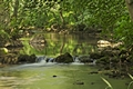 >Woodland River Scene, Wolfscote Dale by Rod Johnson