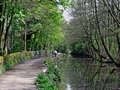 >Cromford Canal, Tree Lined Walk by Rod Johnson