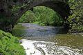 >The River Dove Beneath Coldwall Bridge by Rod Johnson