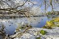 >Wintry River at Newton Road Park by Rod Johnson
