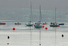 A view of yachts and boats moored on Carsington Water near Hognaston in Derbyshire, England. Link to Inland Boats Gallery.