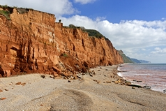 Salcombe Hill cliff, located to the east of Sidmouth in Devon, England. The view looking towards Beer Head shows the red-brown mudstone cliff. Link to Devon Gallery.